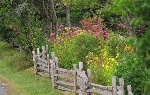 Декоративна ограда за градината - задължителна или луксозна? снимка