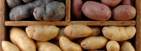 Съхранение на картофи: 4 важни правила, които трябва да се следват, за да се запази културата