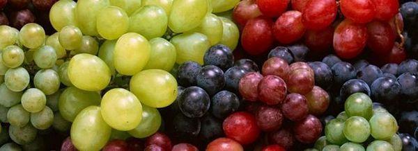 Съхранение на гроздето: някои полезни съвети