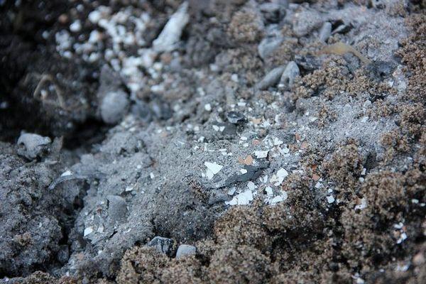 Shell се подава към почвата