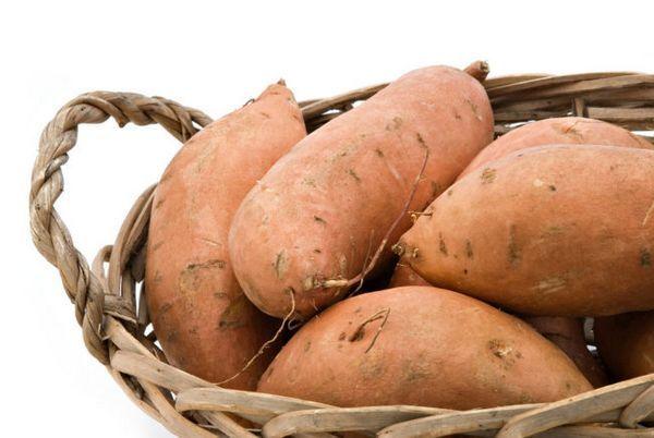 Реколта на картофи Лапот