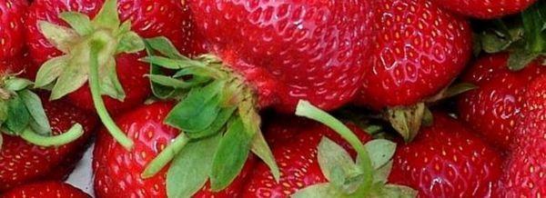 Кимбърли: ягоди с аромат на карамел