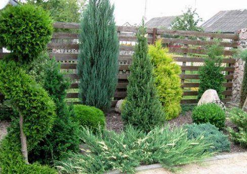 Ограда украсена с декоративни храсти