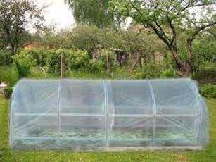 Дълбока оранжерия за краставици