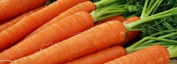 Време е да сеят моркови
