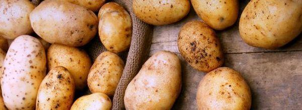 Болести на картофите