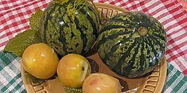 Осоляване дини в бъчви - всички нюанси на вкусни кисели краставички